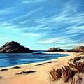 Havik Beach by Janet King