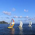 Hawaii Sailboats by Joss