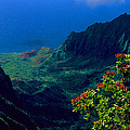 Hawaiian Cliffs by Ron Regalado