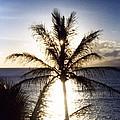 Hawaiian Sunset by Debbie Poetsch