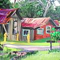 Hawaiian Tin Roofs by E Dan Barker
