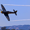 Hawker Sea Fury by Garry Gay