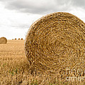 Hay Bales by Edward Fielding