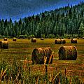 Hay Bales II by David Patterson