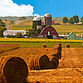 Hay Bales Leading To Barn by Randall Branham