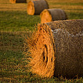 Hay Bales  by Mark Duffy