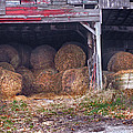 Hay Bales by Nancy Griswold