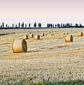 Hay Bales by You find some of my photos on Getty Images.