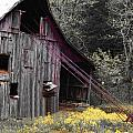 Hay Barn With Random Color by Patricia Erwin