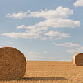 Hay Barrels In Burgundy Region by Niall Sargent