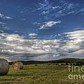 Haymaking Time by Michal Boubin