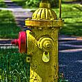 Hdr Fire Hydrant by Mathew Warren
