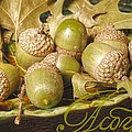 Hdr Green Acorns In A Dish by Jennifer Holcombe