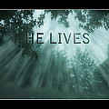 He Lives by Trudy Wilkerson