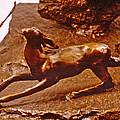 He Who Saved The Deer - Deer Detail by Dawn Senior-Trask