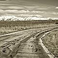 Heading West 2 by Marilyn Hunt