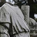 Headless Shepherd by J M Lister