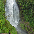 Headwaters Peguche Falls Ecuador by Julia Springer