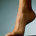Healthy Foot Of A Woman, Raised Onto Its Toes by Phil Jude