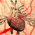 Heart, Computer Artwork by Equinox Graphics