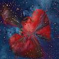 Hearts In Space by Linda Sannuti