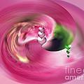 Heartswhirl by Linda Galok