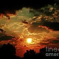 Heat Wave by Scott Allison