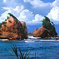 Hells Gate Rocks Near Calibishie Dominica by Duane McCullough