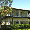 Hemingway's House by Eric Tressler