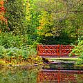 Henes Park Pond Bridge by Ms Judi