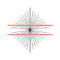 Hering Illusion by SPL and Photo Researchers