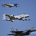 Heritage Flight Wings Over Whitman by Linda Gardner-Goos