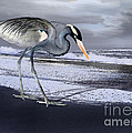 Heron Taking His Afternoon Beach Walk by Danuta Bennett