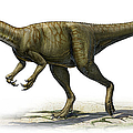 Herrerasaurus Ischigualastensis by Sergey Krasovskiy