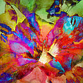 Hibiscus Abstract by Francesa Miller
