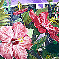 Hibiscus Seductris by Drina Fried