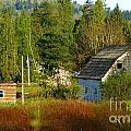 Hidden Barn by Randy Harris