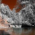 Hidden Bridge by Stephen Pacello