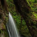 Hidden Falls by Mike Reid