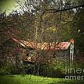 Hidden House In Spring by Joyce Kimble Smith