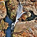 Hidden Images Vert by Michael Frank Jr