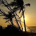 Hidden Paradise by Christy Leigh