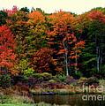 Hidden Valley Lake by Karen Wiles