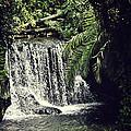 Hidden Waterfall by Karen Cooper