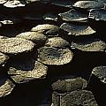 High Angle View Of Basalt Rocks, Giants by The Irish Image Collection