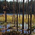 High Water by Jouko Lehto