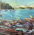 Highest Tide Rebecca Spit by Nanci Cook