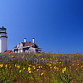 Highland Lighthouse Cape Cod by Skip Willits