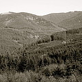 Hills In Black And White by Linda Hutchins