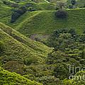 Hills Of Caizan 2 by Heiko Koehrer-Wagner